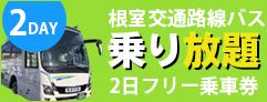 2DAY 根室交通路線バス 乗り放題 2日フリー乗車券